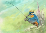 Kingfisher_600pxh
